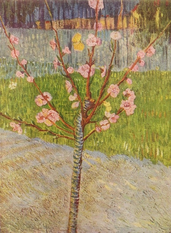 Vincent Van Gogh, Almond Tree in Bloom, 1888, Van Gogh Museum, Amsterdam